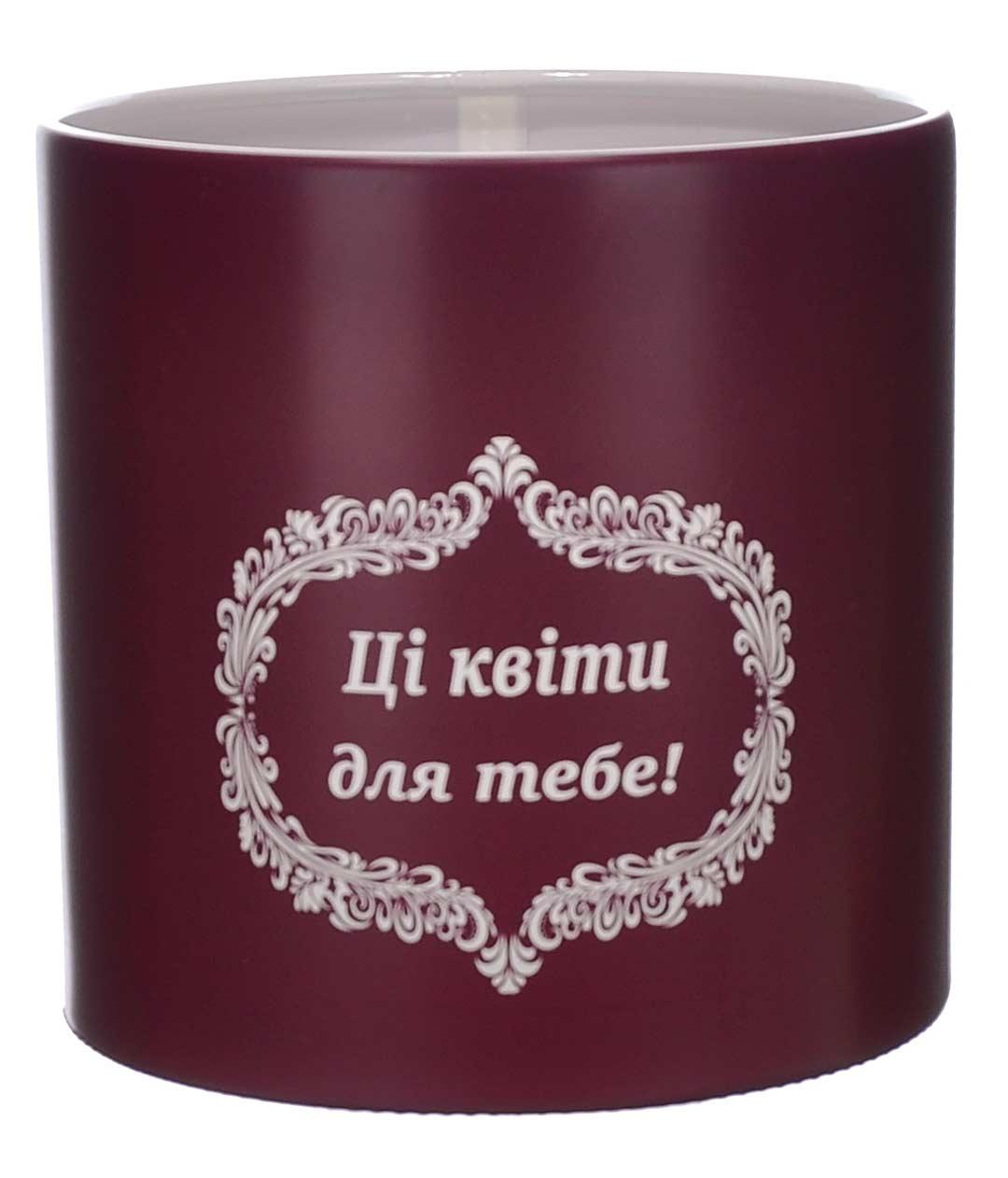 Коробка для цветов пластиковая Ці квіти Бордо 140/140